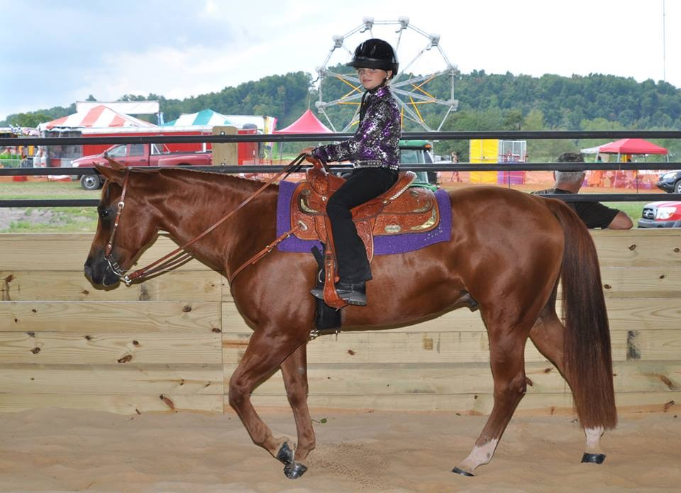 Rental facilities for horse shows, camps, and equine events in Randolph County, WV